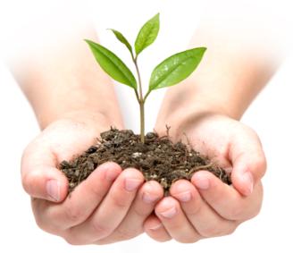 hand-plant