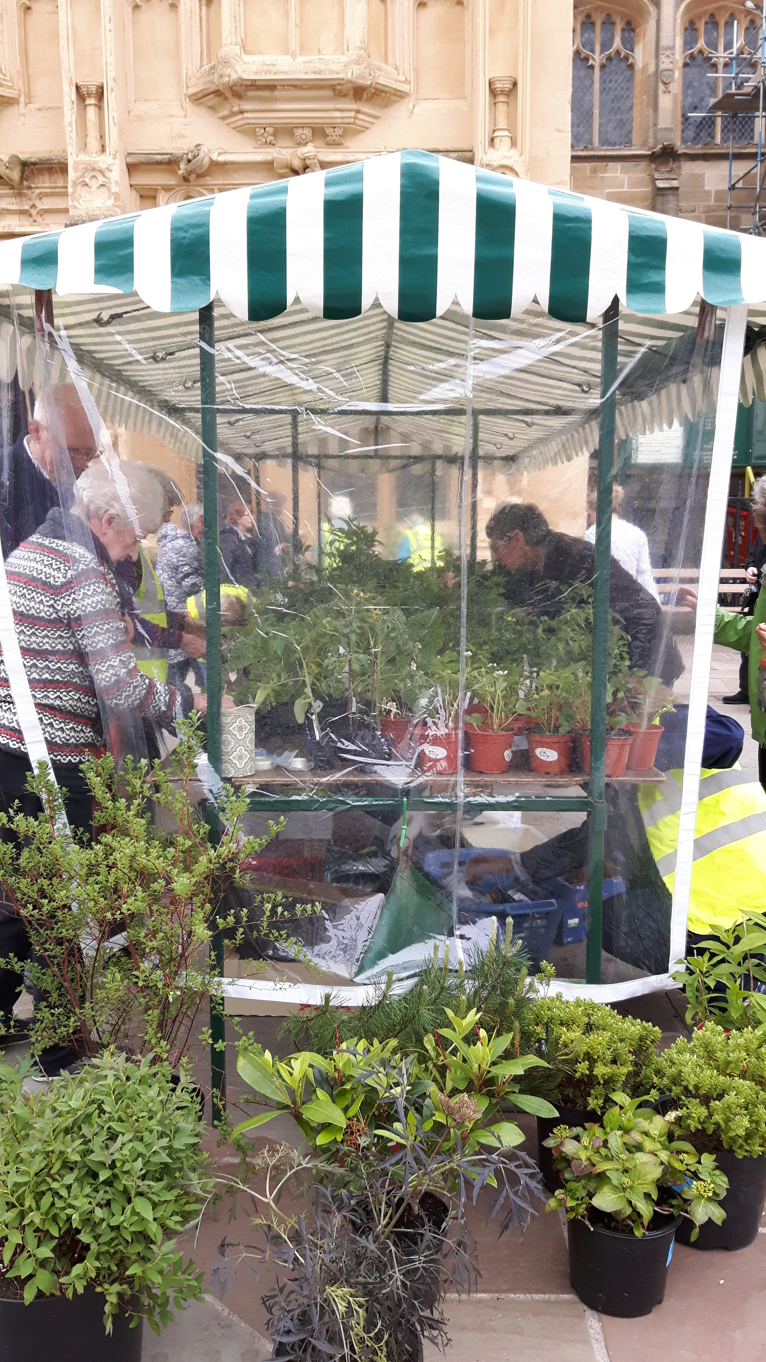 Plant Sale May 26th