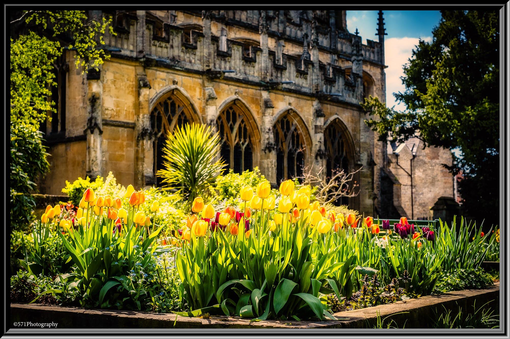 sunny-border-abbey-grounds